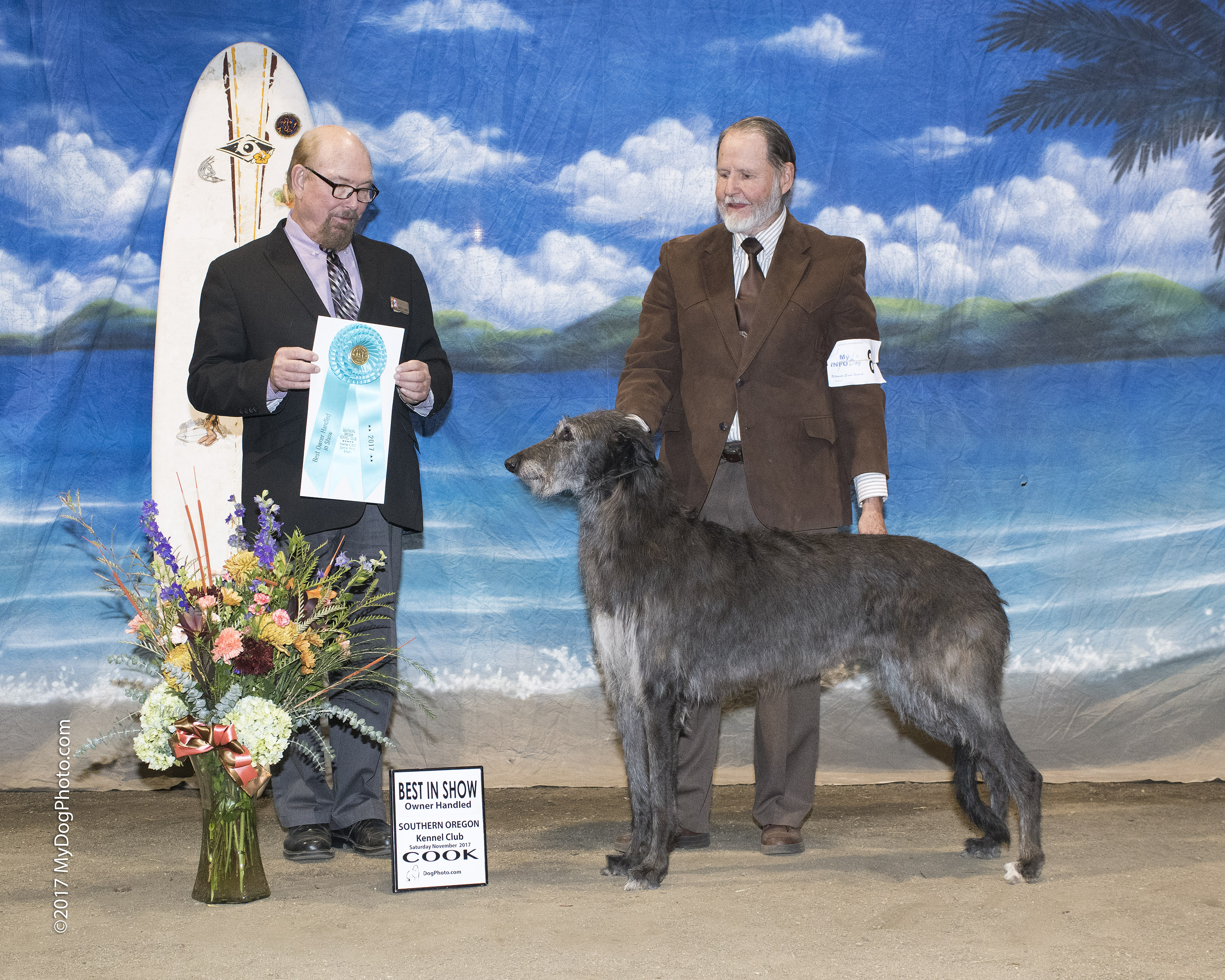 COOK graphy Dog Show graphy since 1969