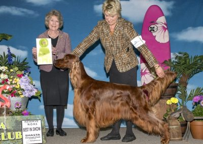 -dog-show-photographer-west-coast_ISET RBIS OH